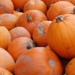 Halloween i Tivoli 2