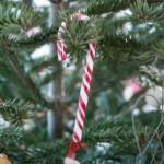 juletræ-3